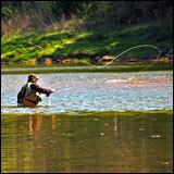 Arkansas - White River State Park