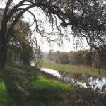 California - Bidwell-Sacramento River State Park