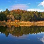 California - Palomar Mountain State Park