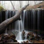 Alabama - Monte Sano State Park